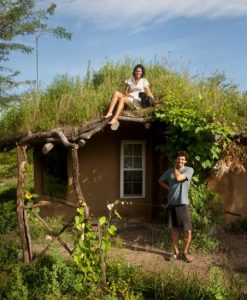 cobb house living roof